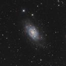 NGC 2403 LHaRGB,                                John D (jaddbd)