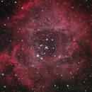 NGC 2244, Rosette Nebula,                                Phil Hosey