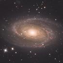 M81,                                Filippo Verlezza