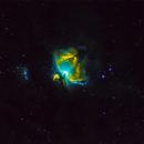 M42 Hubble palette,                                Stefano Zamblera