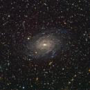 NGC6744, An Intermediate Spiral Galaxy in Pavo,                                TWFowler