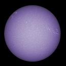 Sun FD in CaK 23th of June 2021 - colorized,                                Arne Danielsen