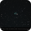 NGC 7008,                                CHERUBINO