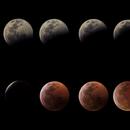Lunar Eclipse Mosaic - January 20, 2019,                                JD