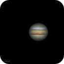 Jupiter at Opposition - 6.10.19,                                David Schlaudt