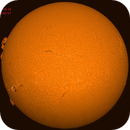 The sun in H Alpha November 15, 2014,                                Robin Clark - EAA imager