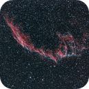 NGC 6995,                                Scotty Bishop