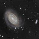 NGC 4725 et 4712  Galaxies dans la constellation de la Chevelure de Bérénice,                                Roger Bertuli