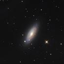NGC 2841,                                Alberto Tomatis