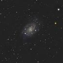 NGC2403,                                Adam Jaffe