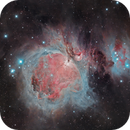 Orion Nebula in 30 Minutes,                                Scott Tucker
