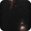 Orion Widefield,                                Fritz