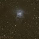 "Iris Nebula (NGC7023) with OK 12"" and Canon 5D,                                Luigi Fontana"