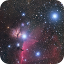Horsehead Nebula,                                Ken-ichiro Tanaka