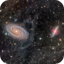 22 hr M81 and M82 with IFN,                                Jeff Weiss