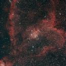 Heart Nebula,                                rayp