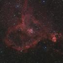 Heart Nebula,                                Bill