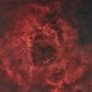 Rosette Nebula -- Starless Version,                                nicholas disabatino