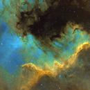 Cygnus Wall,                                Frank Turina