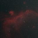 IC 2177 Seagull Nebula,                                bits__please