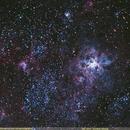 NGC 2070 - Tarantula Nebula,                                Uri Abraham