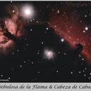 Horse Head & Flame Nebula,                                Carlos A. Archila