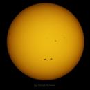 The Sun (September 27, 2015),                                Георгий Коньков