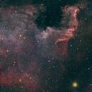 North America Nebula,                                Dominic