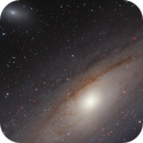 M31,                                Thomas Kings
