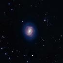 M58,                                David Redwine
