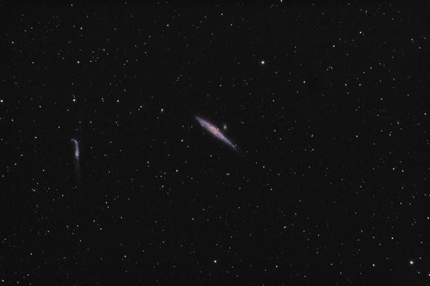NGC 4631 & NGC 4656 (Whale and Stick),                                Ivaylo Stoynov