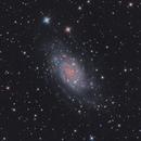 NGC2403 three nights integration,                                SJK