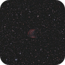 Medusa Nebula,                                Chris