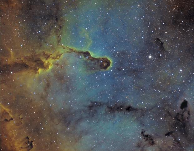 IC1396 Elephant's Trunk Nebula SHO,                                LAMAGAT Frederic