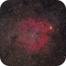 Elephant  Trunk Nebula  IC 1396,                                Steven Wade