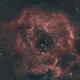 C49 Rosette Nebula-Ha-HOO,                                Adel Kildeev