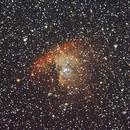 NGC281 - Pacman Nebula,                                Paul Surowiec