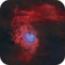 IC-405 The Flaming Star Nebula (Starless),                                Earl Hebert