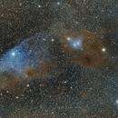 "IC 4592 ""Blue Horsehead"",                                Poochpa"