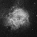 Rosette Nebula in Ha,                                Steve Cooper