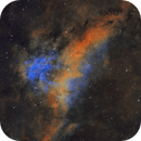 Lynds Bright Nebula 251 in Cygnus,                                Steve Milne