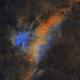 Lynds Bright Nebula 251 in Cygnus,                                Steve Milne