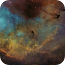 Globules in IC 1396,                                Christoph Lichtblau