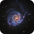 M101,                                Roberto Colombari