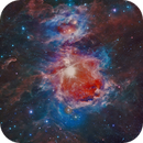 M42 Orion Nebula(Infrared/Optical ),                                Gianluca Belgrado