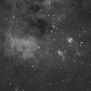 IC410 and the Tadpoles,                                Albert van Duin