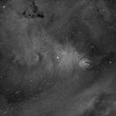 Cone Nebula Hydrogen Alpha,                                Charles Ward