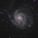 M101 Pinwheel Galaxy,                                Neil_Isaac