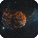 Jellyfish from the City (Mostly) IC443,                                Kevin Morefield