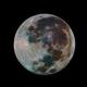 Karasaki Moon,                                Ross Walker